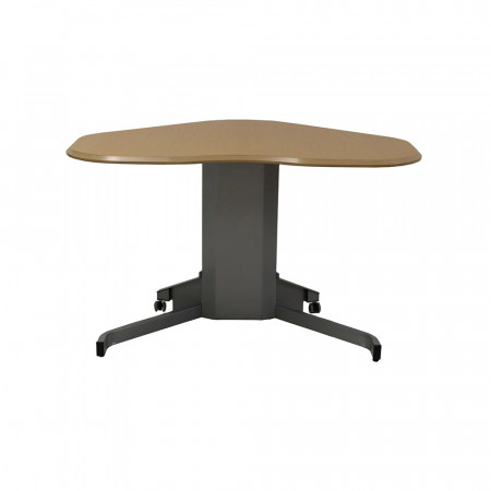 Ergo Adjustable Height Motorized Table